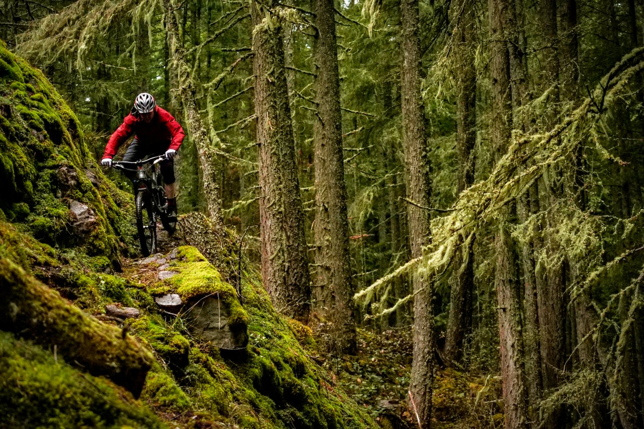 Mountain Biking. Photo: Brice Shirbach/Sunshine Coast Tourism